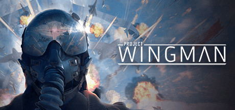 Project Wingman Game For PC With Torrent Download